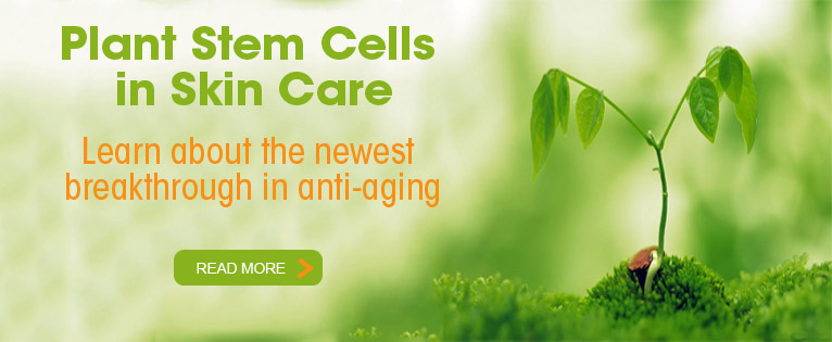 Plant Stem Cells for Anti-Aging