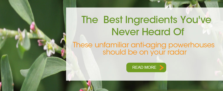 The Best Anti-Aging Ingredients You've Never Heard of