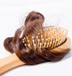 Hair shedding on hairbrush