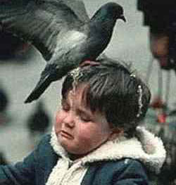 A boy getting pooped on by a bird