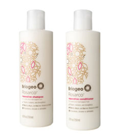 briogeo rosarco shampoo and conditioner