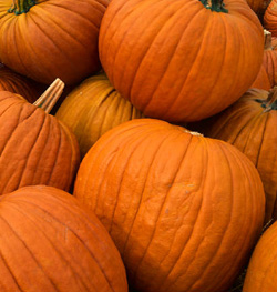 pumpkin skin care benefits