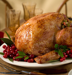 Turkey with cranberry