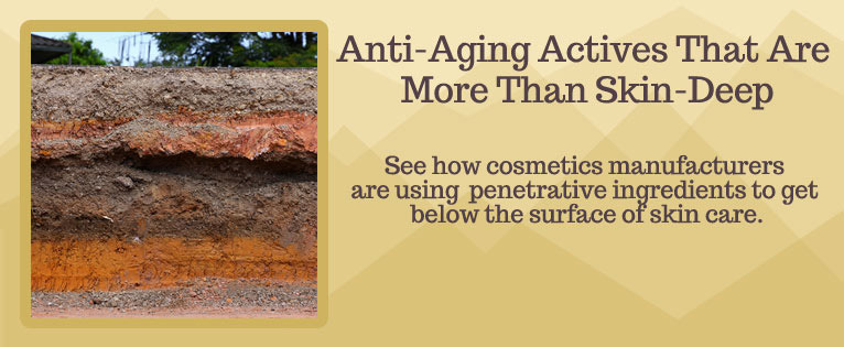Trending Now: Anti-Aging Actives That Are More Than Just Skin Deep