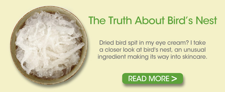 The Truth About Bird's Nest