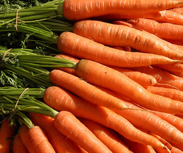 40 carrots skin care truth in aging