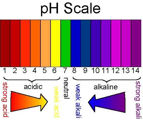 Glycolic acid and pH levels- getting the balance right ...